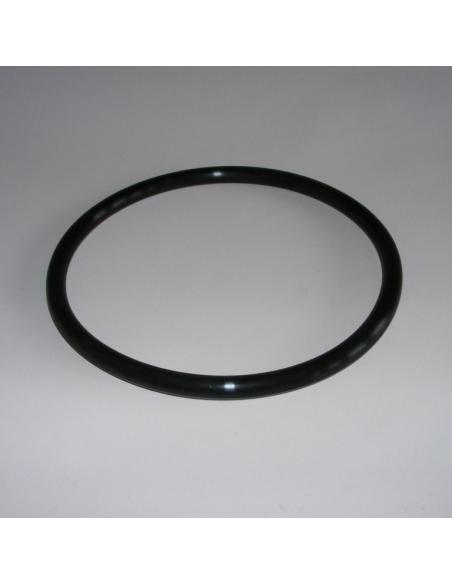 O-Ring Ø156 ProfiClear Module